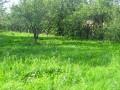vand-teren-de-casa-lacul-buftea-small-1
